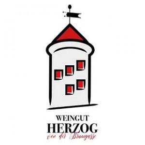 weingut_heuriger_herzog_brunngassenheuriger_thermenregion_niederoesterreich_wege_zum_wein_logo